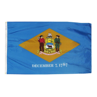 6x10 ft. Nylon Delaware Flag with Heading and Grommets