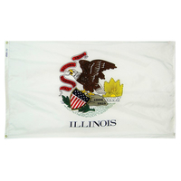 6x10 ft. Nylon Illinois Flag with Heading and Grommets