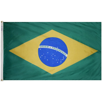 4x6 ft. Nylon Brazil Flag Pole Hem Plain