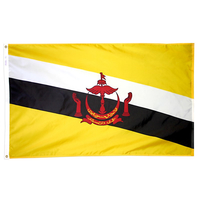 2x3 ft. Nylon Brunei Flag Pole Hem Plain
