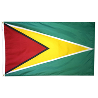 3x5 ft. Nylon Guyana Flag Pole Hem Plain