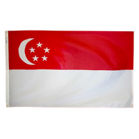 2x3 ft. Nylon Singapore Flag with Heading and Grommets