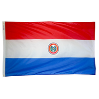3x5 ft. Nylon Paraguay Flag Pole Hem Plain