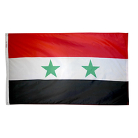 5x8 ft. Nylon Syria Flag with Heading and Grommets