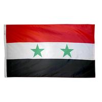 3x5 ft. Nylon Syria Flag Pole Hem Plain