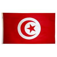 3x5 ft. Nylon Tunisia Flag Pole Hem Plain