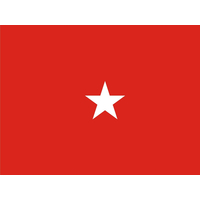 3 ft. x 4 ft. Army 1 Star General Flag w/Grommets