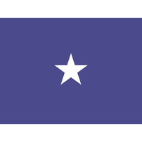 3 ft. x 4 ft. Air Force 1 Star General Flag Pole sleeve Only