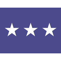 3 ft. x 4 ft. Air Force 3 Star General Flag w/Grommets