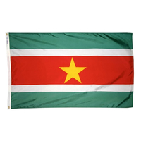3x5 ft. Nylon Suriname Flag Pole Hem Plain