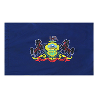 4x6 ft. Nylon Pennsylvania Flag Pole Hem Plain