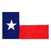 3x5 ft. Nylon Texas Flag Pole Hem Plain