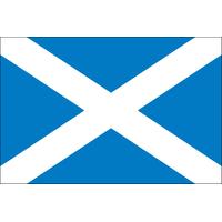 4x6 ft. Nylon Scotland of St Andrews Cross Flag Pole Hem and Fringe