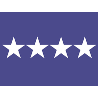 3 ft. x 4 ft. Air Force 4 Star General Flag w/Grommets
